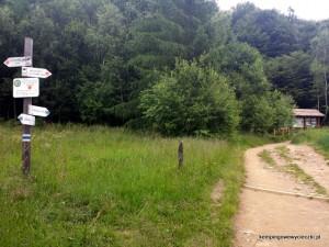 Skrzyżowanie ze szlakiem konnym