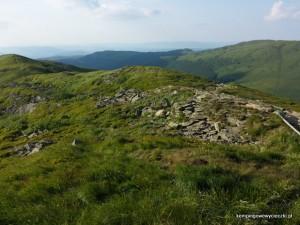widok ze szczytu Tarnicy