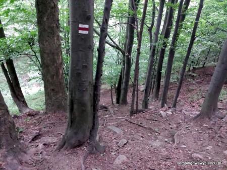 czerwony szlak na Lackową