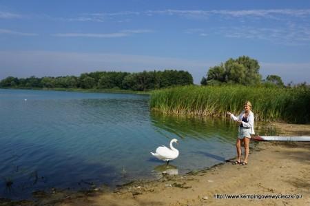 Jezioro Gopło Połajewek