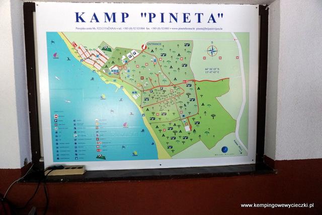 kemping Pineta w Fazanie