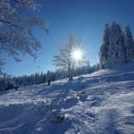 Trasy narciarskie w Zieleńcu