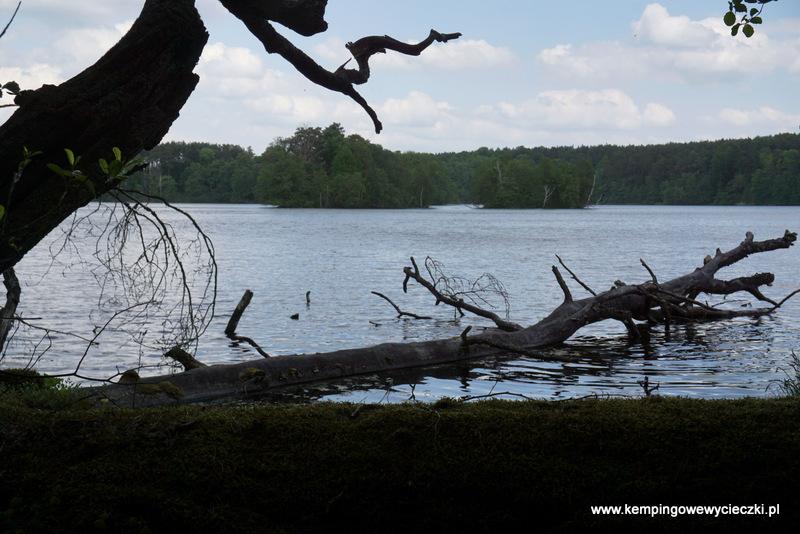 jezioro Lubiatówka