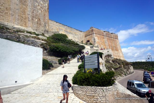 Bonifacio Korsyka