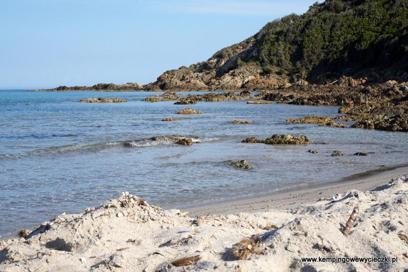 Fautea Korsyka