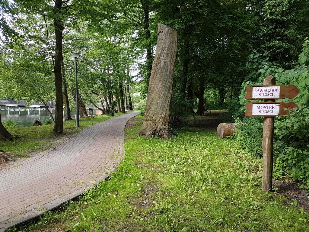 ścieżka do Parku