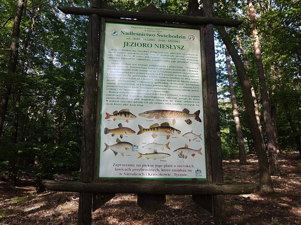tablica informacyjna nad jeziorem Niesłysz