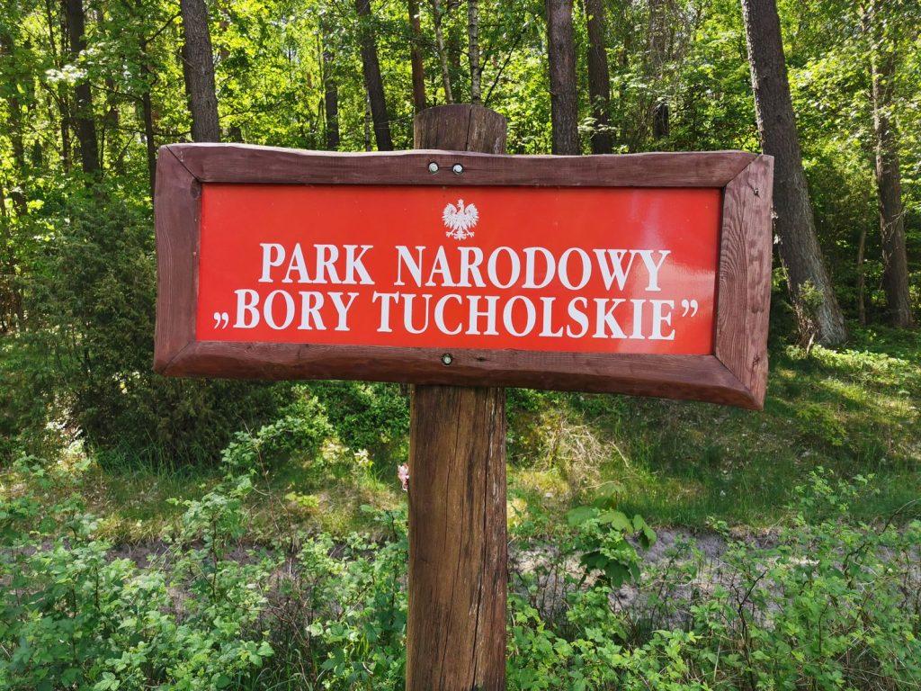Bory Tucholskie