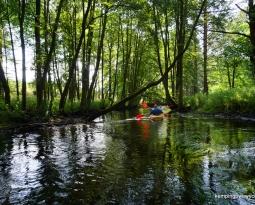 Spływ Kajakowy Białą i Czernicą