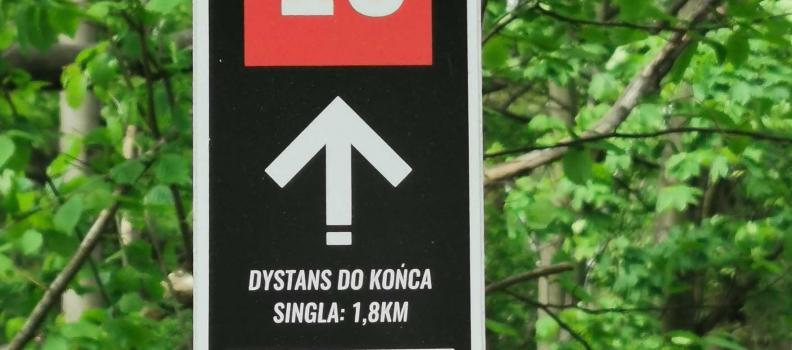 Singletrack Dłużek Kaczawskie