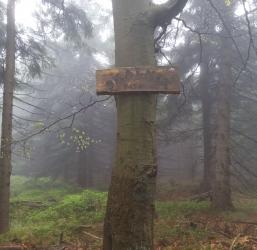 Skalnik – najwyższe szczyty gór w Polsce 2/28